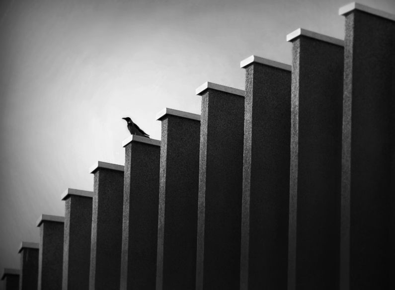 Principles Of Design Line : Rhythm photography composition and