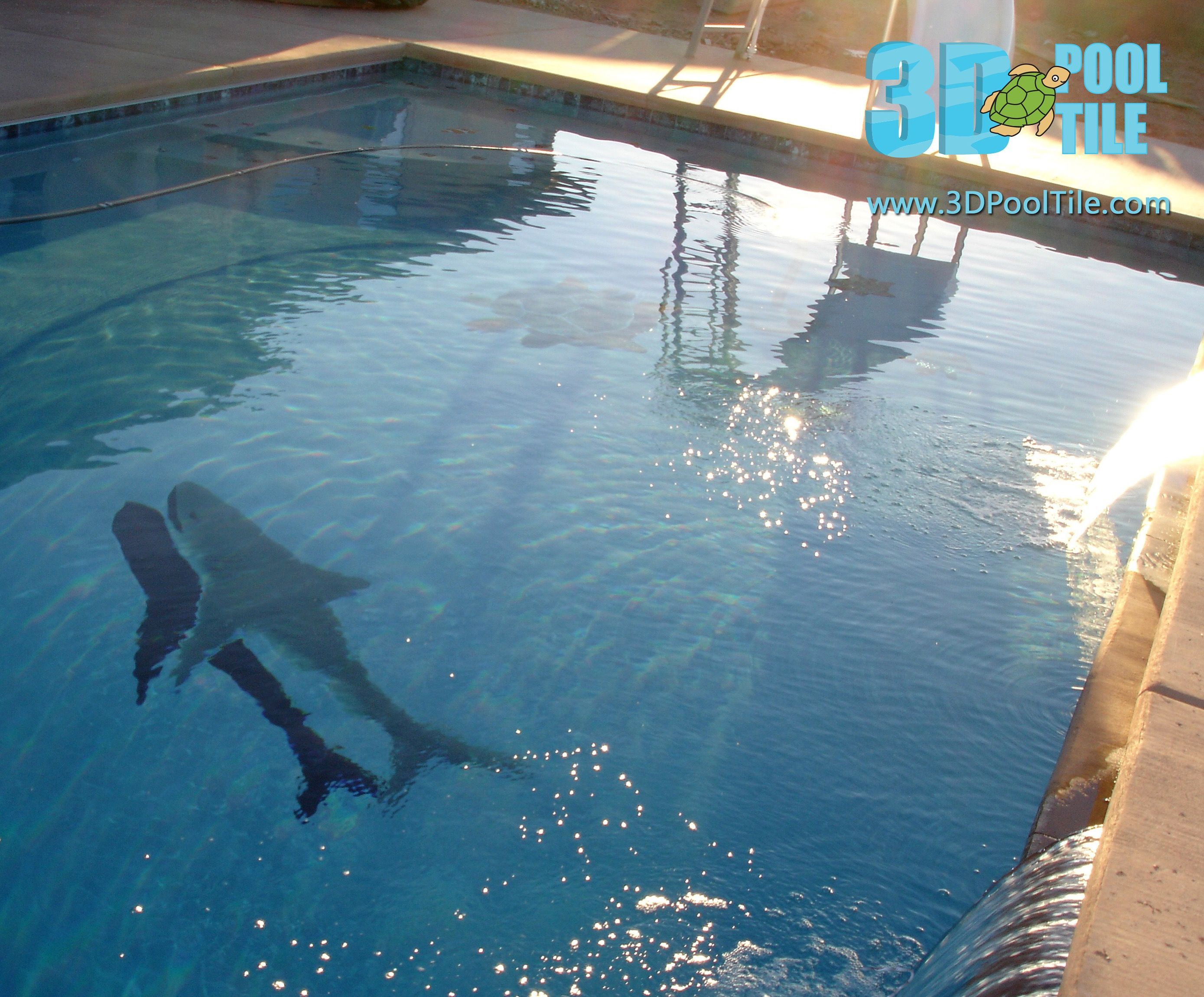 3d pool tile great white shark pool mosaics that you can for Great swimming pools