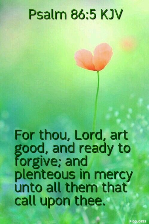 Image result for psalm 86:5 kjv