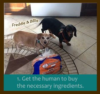 Furever Cookbook! Help by submitting recipes. 100% of Proceeds Go Directly to Saving Dachshunds Every Day!!!