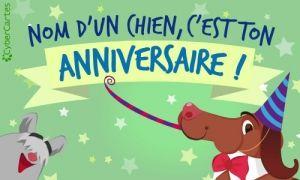 Nom Dun Chien Cest Ton Anniversaire Perso Birthday Happy