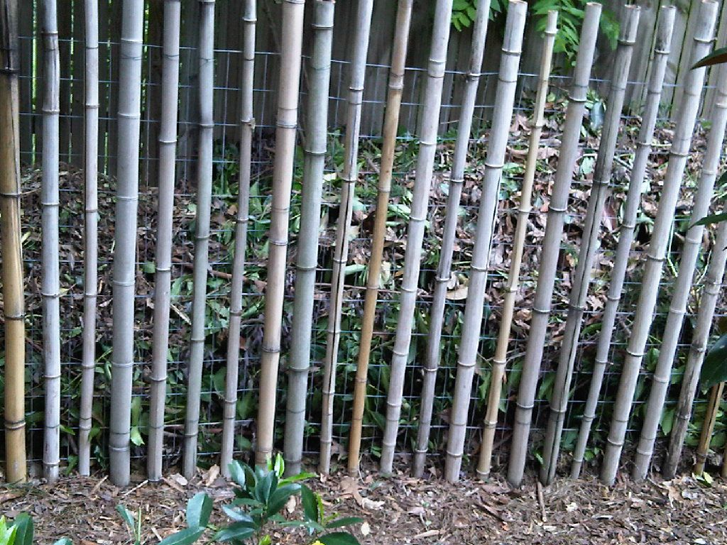 10 garden fence ideas that truly creative inspiring and low 10 garden fence ideas that truly creative inspiring and low cost baanklon Gallery