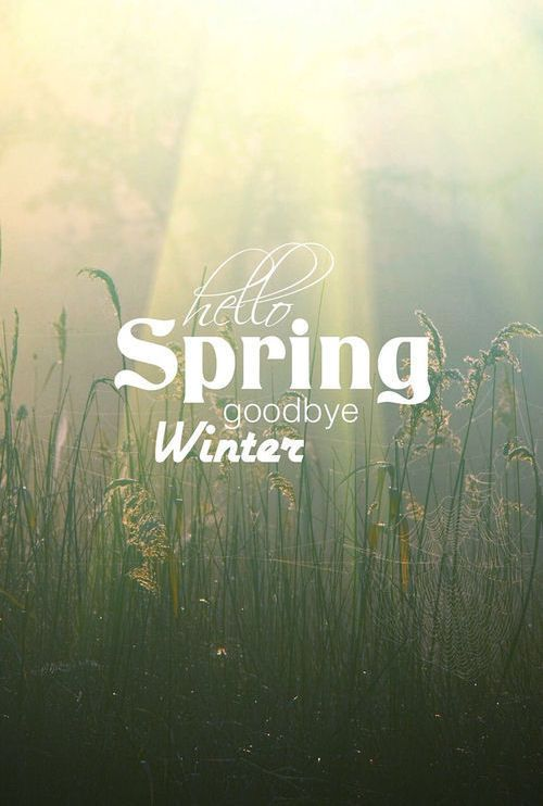 hello spring goodbye winter quotes spring quote winter spring