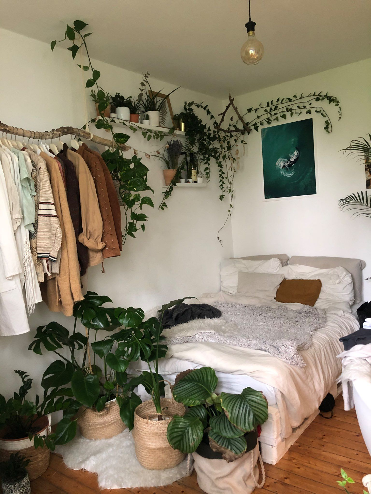 Persönlicher Jungle