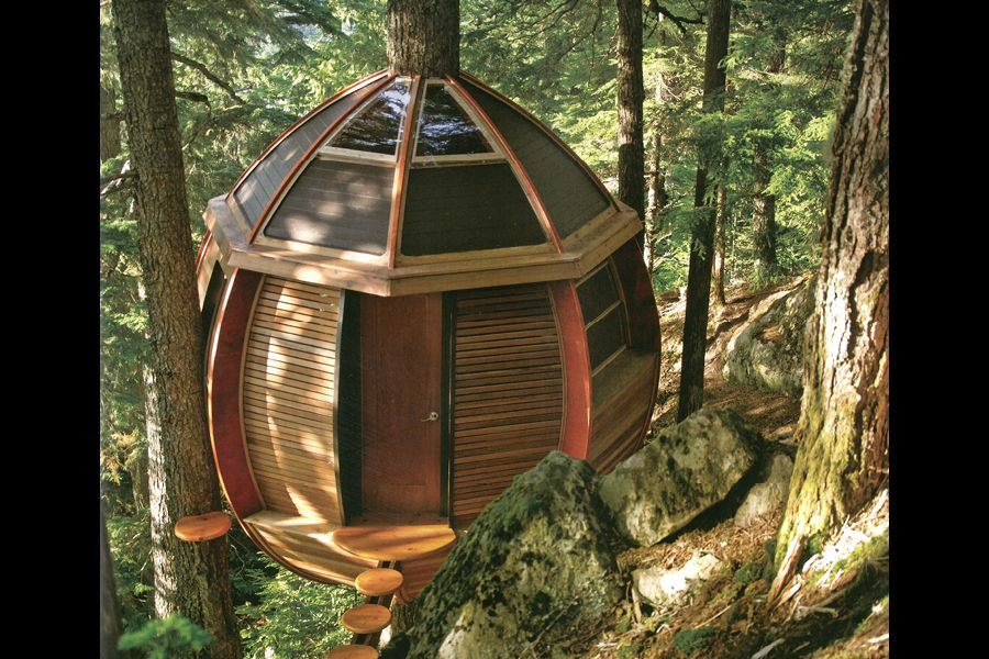 Extreme Tree Houses | Tree house design goes out on a limb ... on tree back designs, tree palm designs, scarecrow designs, tree arm designs, tree wood designs, tree leaf designs, snowman designs, tree trunk designs, tree hand designs, tree root designs, candle designs, tree twig designs, tree of life designs, snow designs, tree family designs, tree leg designs, pencil designs, flowers designs, beach designs,