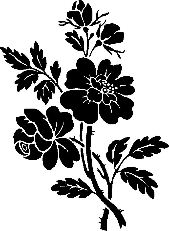 Pin By Nik On Cricut Black Flowers Stencil Designs Flower Silhouette