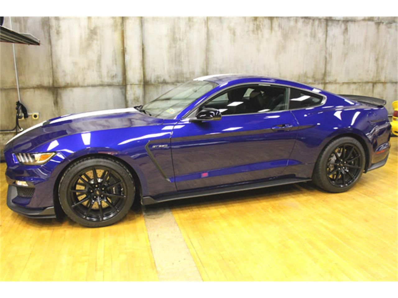 2016 Shelby Mustang Shelby, Atlantic city, Mustang shelby