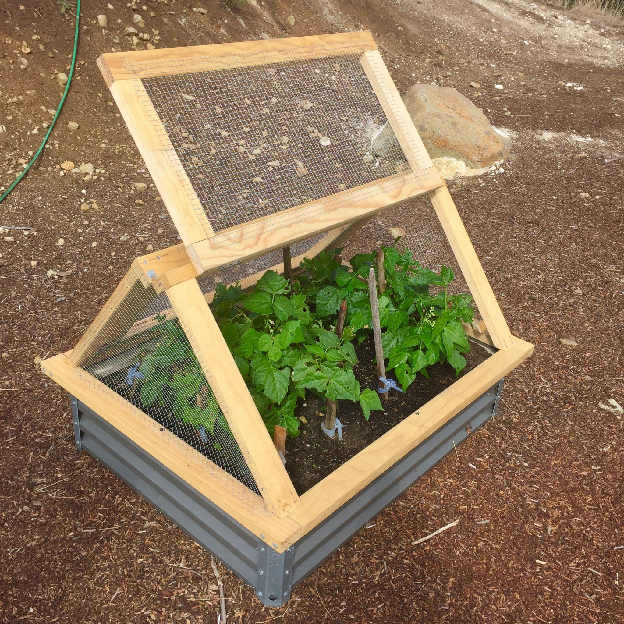Pin On Garden Boxes Raised