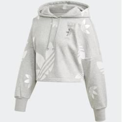 Photo of Großer Logo Cropped Hoodie adidas