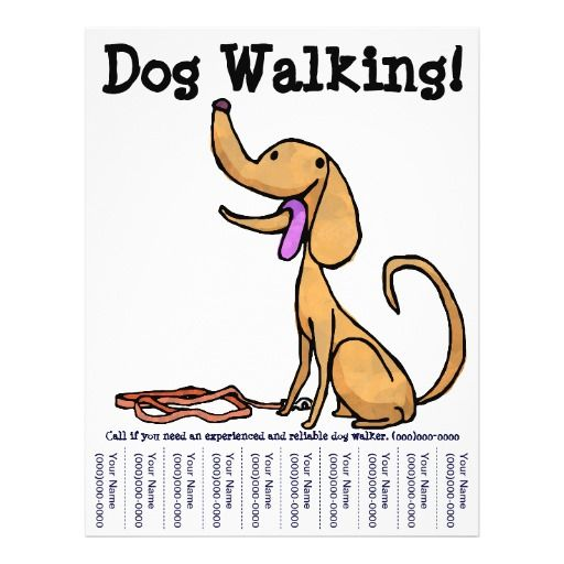 dog walking flyer template free dog walking flyers google search dog walking