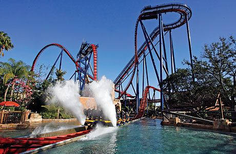 55ac065e419f2b6947f17bf9f3fdcab2 - Sheikra Roller Coaster At Busch Gardens