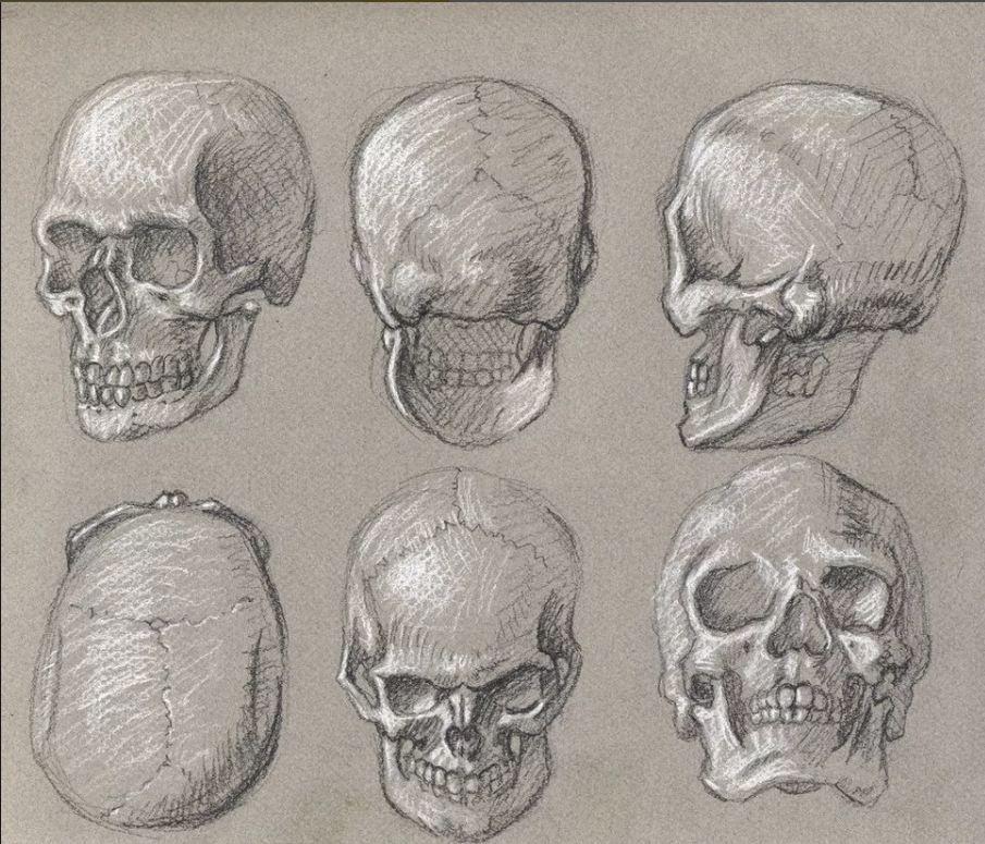 картинки черепа со всех сторон это костюмированная постановка