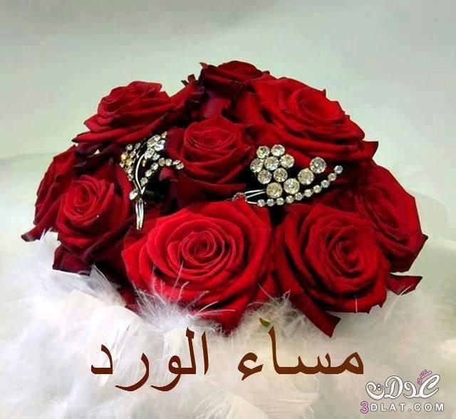 كلام جميل عن المساء 2019 عبارات مساء الخير كلام عن قهوة المساء خواطر مسائية قصيرة Red Bouquet Wedding Wedding Bouquets Red Roses
