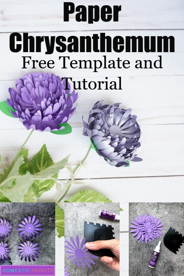 Paper Chrysanthemum Flower Template #paperflowertutorial