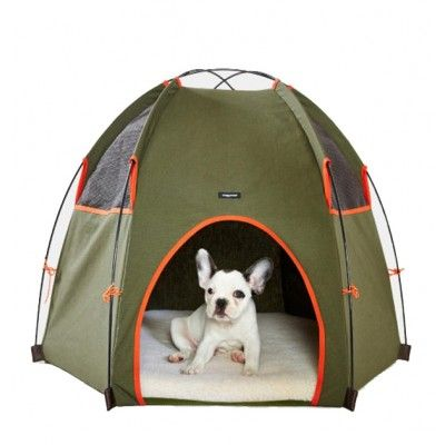 Dog Tent Made In Usa L Wagwear Tee Pee Hound Lounge Olive Camping