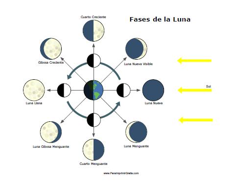 Fases de la Luna - Para Imprimir Gratis - ParaImprimirGratis.com ...