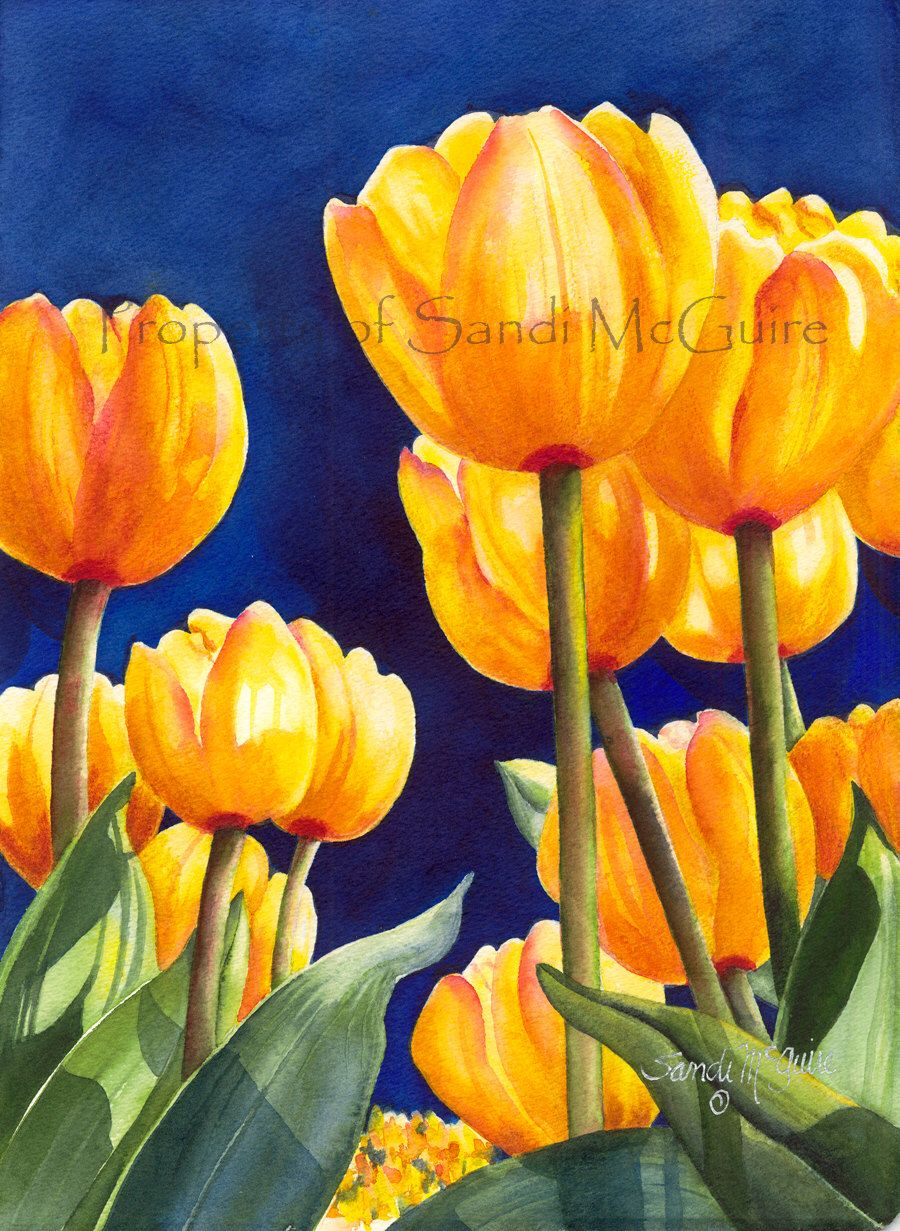"Original Watercolor Print ""Yellow Tulips"" by Sandi McGuire by SandiMcGuire on Etsy https://www.etsy.com/listing/256926104/original-watercolor-print-yellow-tulips"