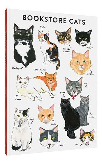 #fitness inspiration desenho Bibliophile Flexi Journal: Bookstore Cats