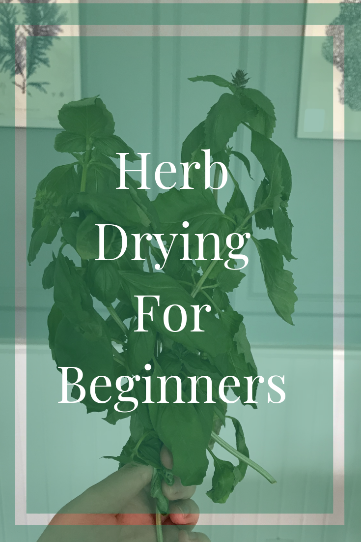 One of my favorite ways to preserve my herbs is to dry them. Herb drying can take time, but it is worth it when you are able to use the herbs in your cooking or teas whenever you want! of my favorite ways to preserve my herbs is to dry them. Herb drying can take time, but it is worth it when you are able to use the herbs in your cooking or teas whenever you want!