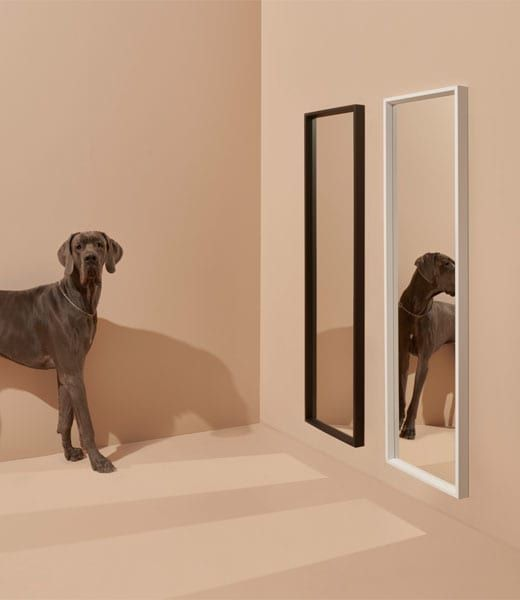 NISSEDAL Black And White Mirrors With A Dog And It's