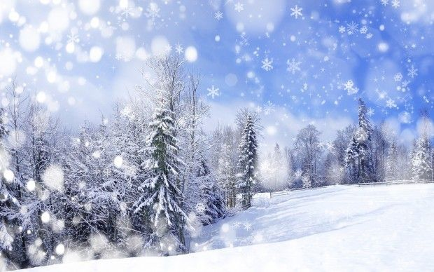 Snow Wallpapers Hd Free Download Winter Scenery Scenery