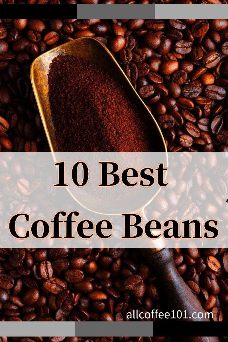 Best Coffee Beans Coffee Beans Best Coffee Beans