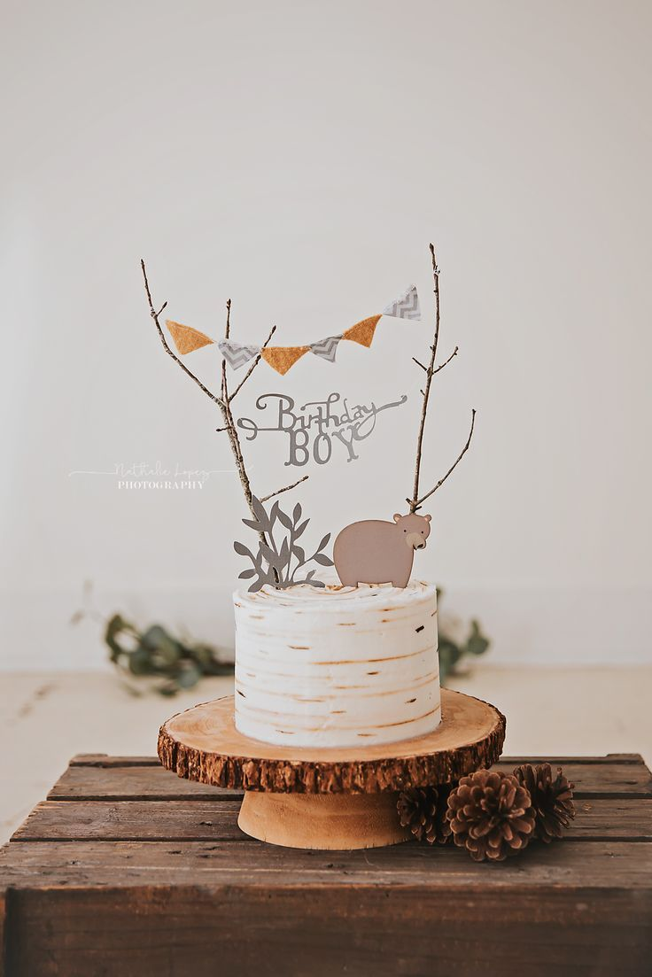 Woodland cake smash theme. Birthday boy! - #birthday #Boy #cake #Smash #theme #woodland #babyboybirthday