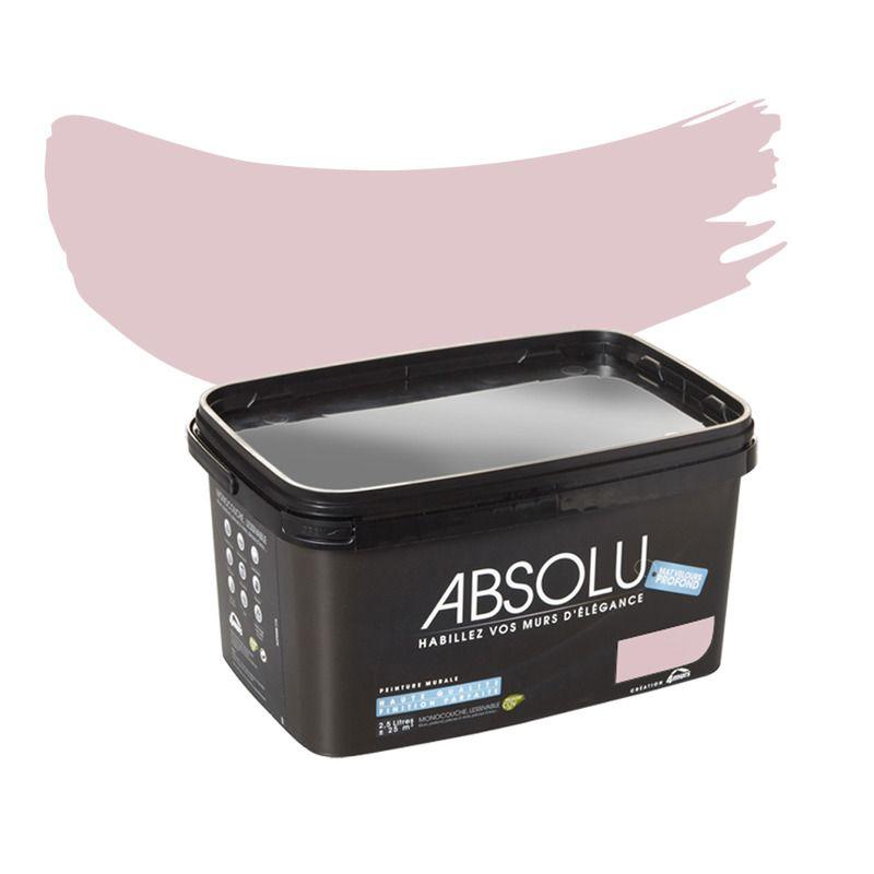 Peinture Multi Supports Absolu Acrylique Rose Poudre Mat 2 5 L