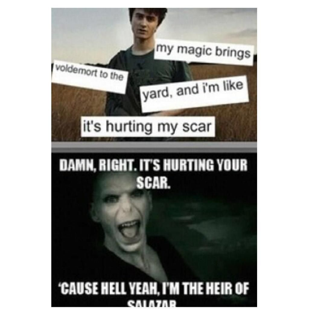 Harry Potter Memes Are The Bestnow This Song Will Be In Your Head All Day Harrypotter Harry Potter Voldemort Harry Potter Memes Harry Potter Memes Hilarious