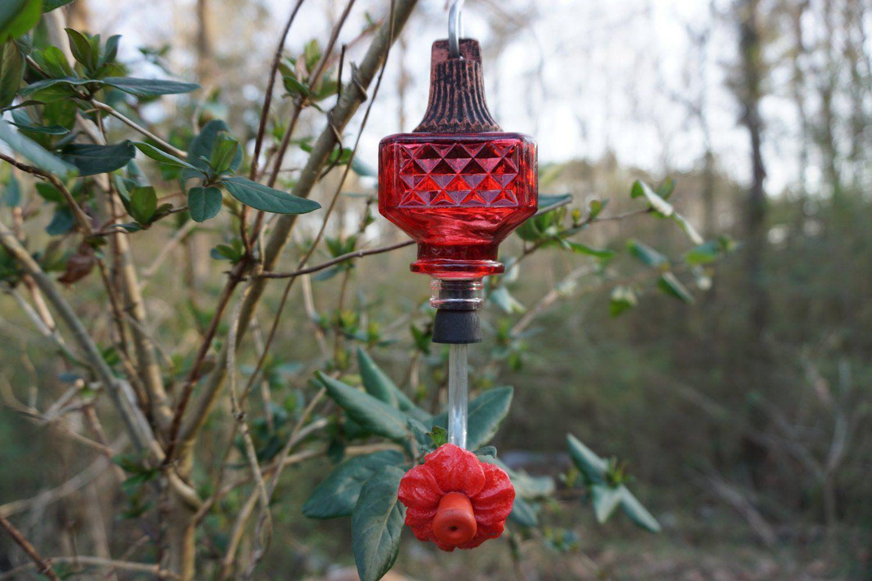 Small Glass Hummingbird Feeder Etsy Humming bird