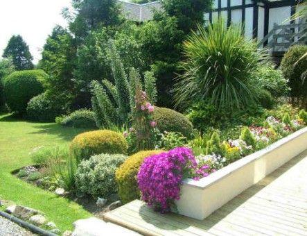 Plantas De Jardin De Sol