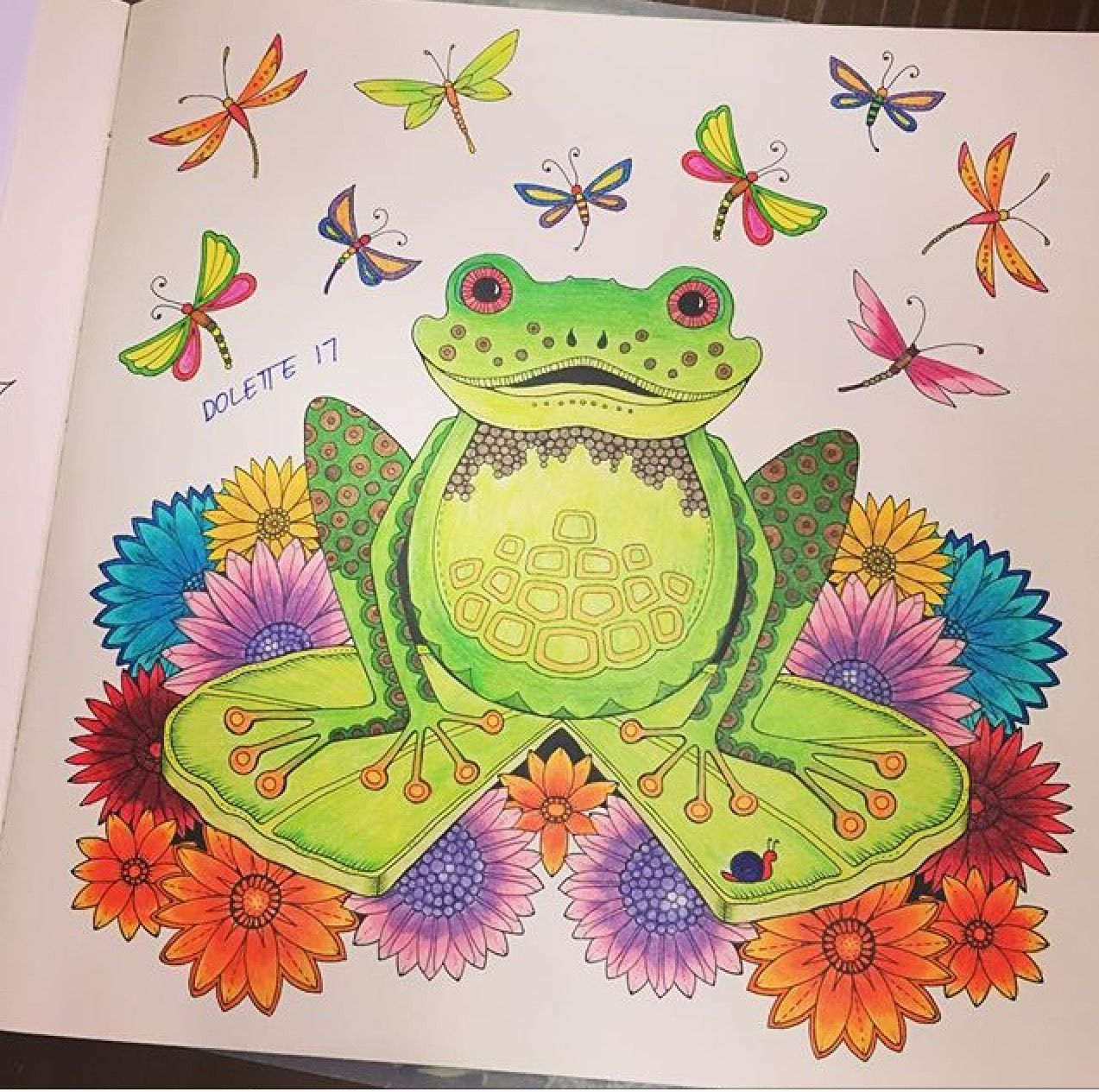 My Green Frog From The Secret Garden Coloring Book