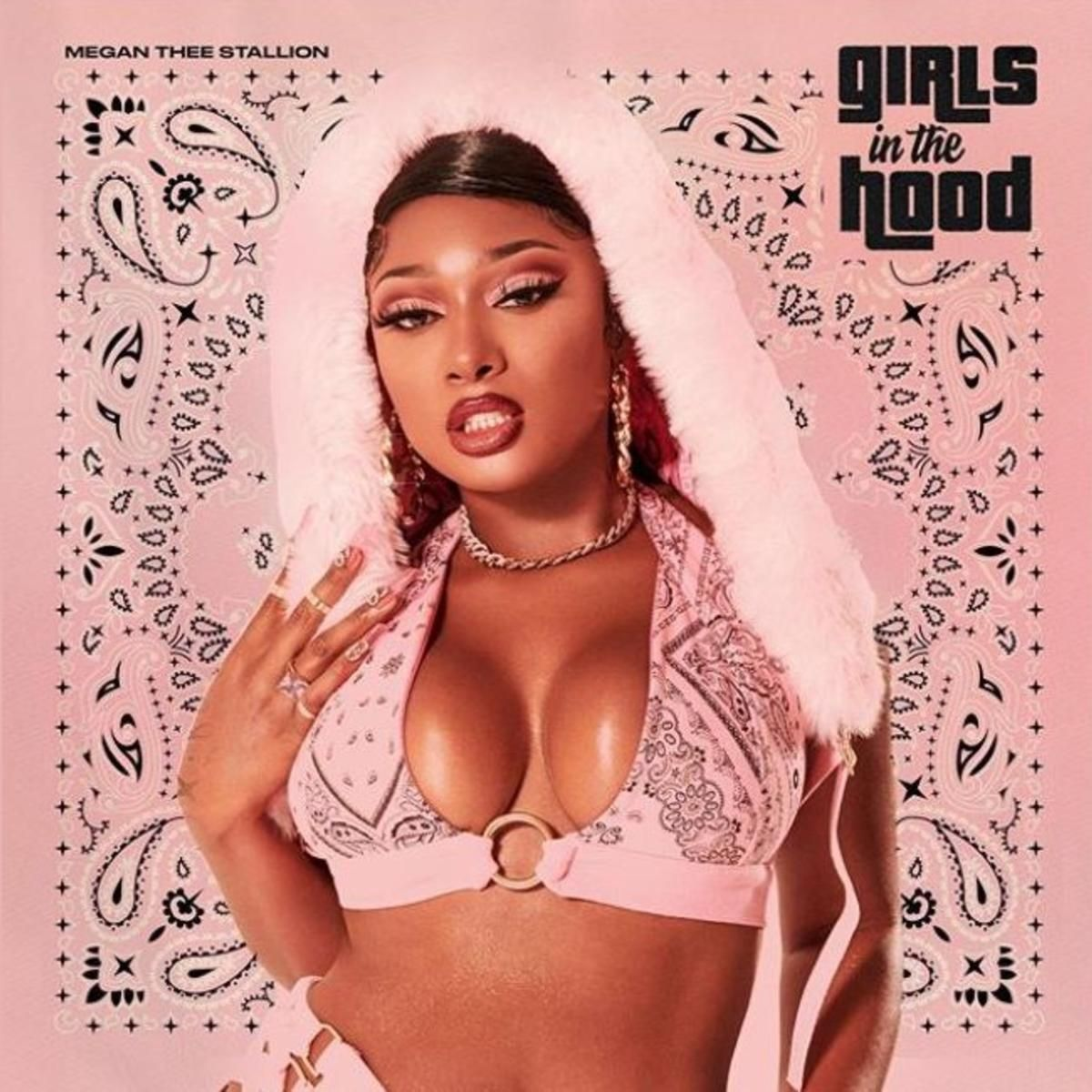 Girls In The Hood Megan Thee Stallion In 2020 Music Album Cover Bad Girl Aesthetic Female Rappers
