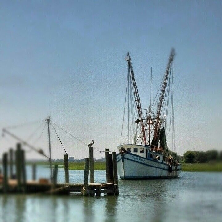 Shrimp Boat on Shem Creek Water boat, Boat, Salt water