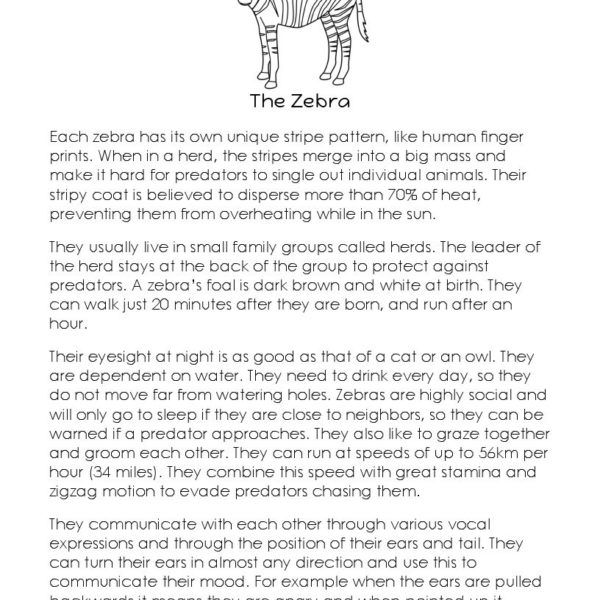 Short story the zebra short story the zebra this short story is designed for an intermediate reader it has a one page reading passage followed by a page of multiple choice fandeluxe Gallery