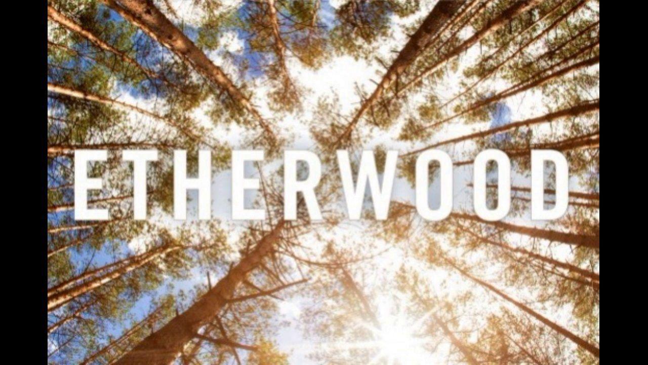 Etherwood Souls Apart Original Music I Love You Music