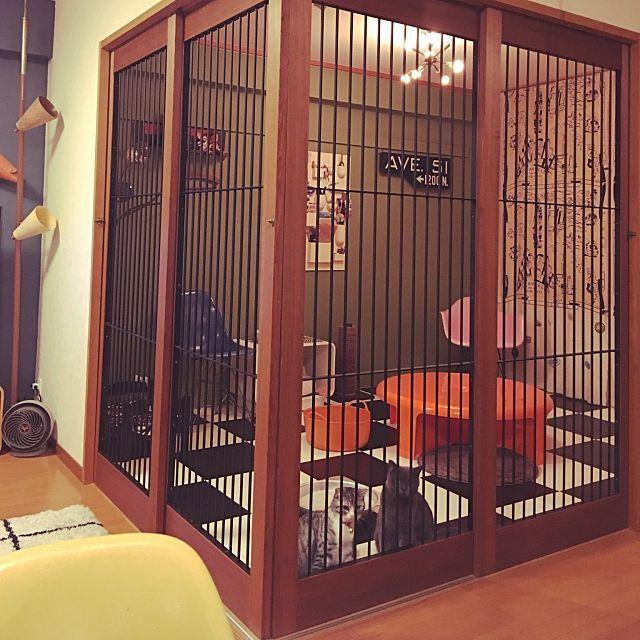 部屋全体 鉄格子 定点観測 モダニカ クアトロクアルティ などのインテリア実例 2016 10 17 23 26 07 Roomclip ルームクリップ ペットの部屋 猫部屋 猫小屋