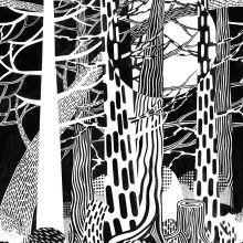 Fototapet - Fir Forest - Cecilia Pettersson
