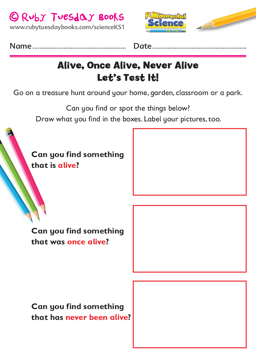 Alive Once Alive Never Alive Hunt By Rubytuesdaybooks Teaching Resources Tes Teaching Resources Teaching Primary School Teaching