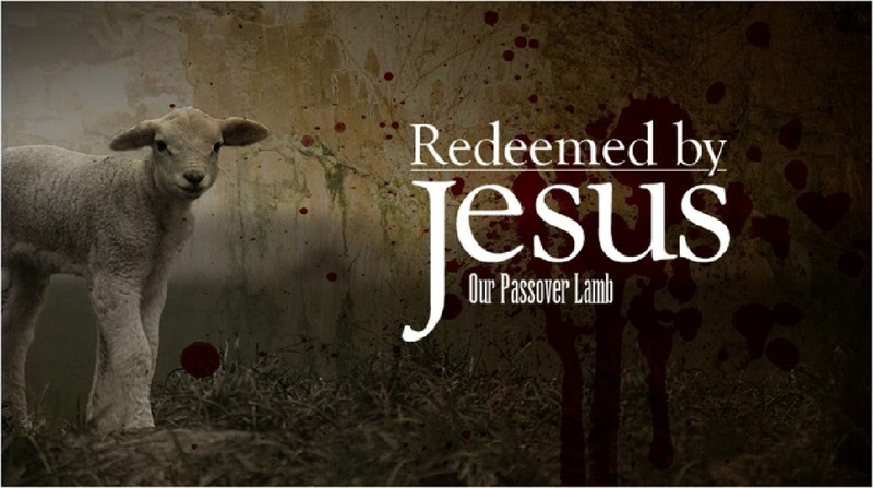 JESUS - OUR PASSOVER LAMB | Passover lamb, Resurrection day, Jesus