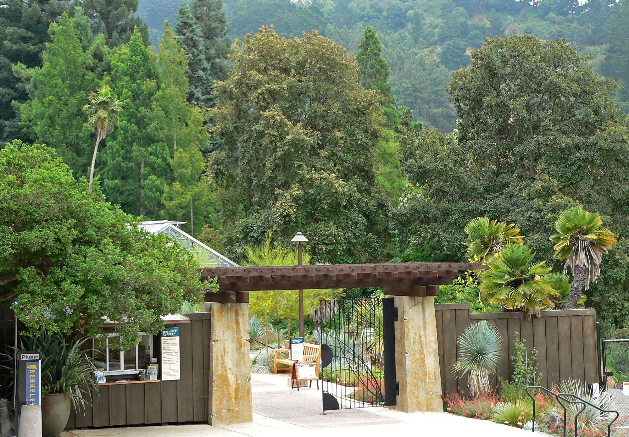 UCBG The University of California Botanical Garden is a