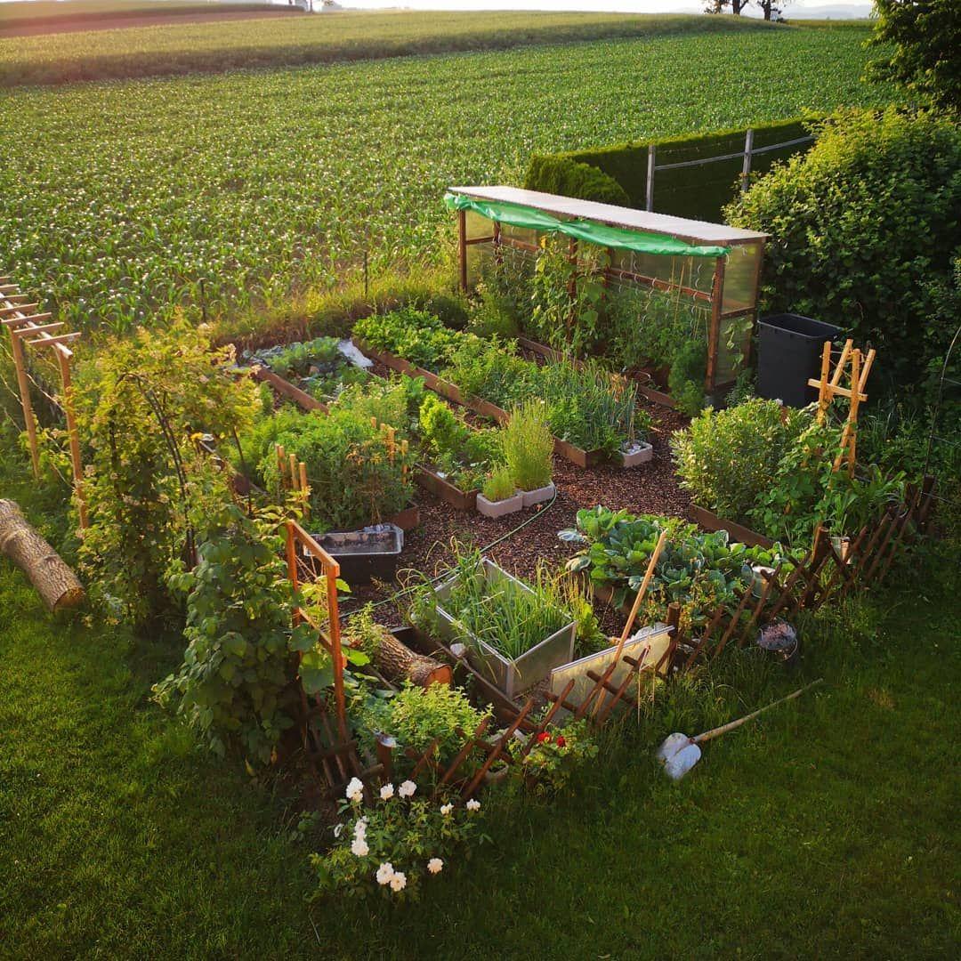 Obst Und Gemuse Aus Dem Eigenen Garten Das Leben Als Selbstversorger Schmeckt Immer Mehr Menschen W In 2020 Selbstversorger Garten Garten Anpflanzen Garten Pflanzen