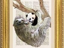 Bradipo e Panda, stampa, pagina dizionario