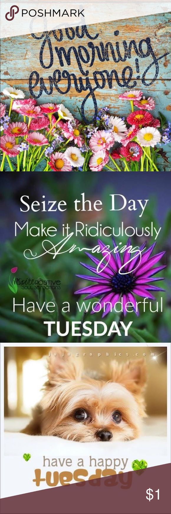 Tuesday for ladys