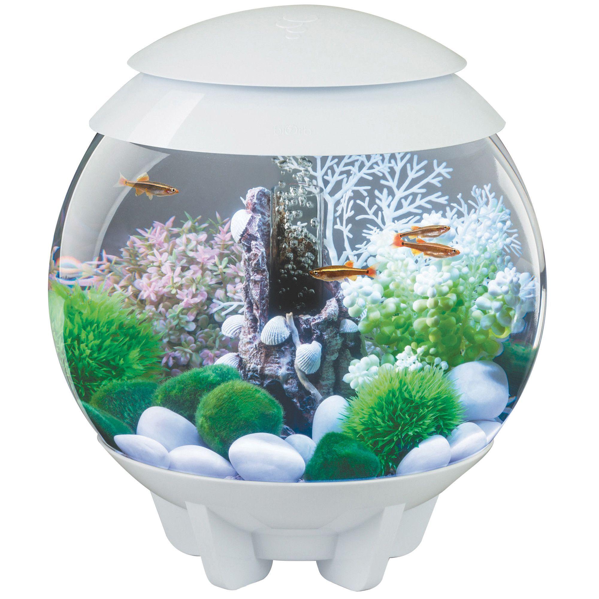 biOrb by Oase Halo MCR 4 Gallon Aquarium White Amazing