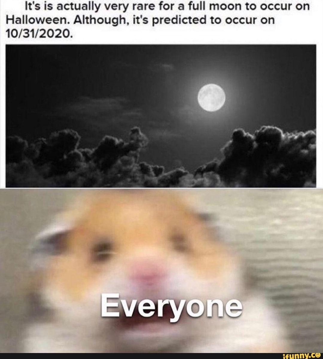 It S Is Actually Very Rare For A Full Moon To Occur On Halloween Although It S Predicted To Occur On 10 31 2020 Ifunny Funny Relatable Memes Stupid Funny Memes Funny Memes