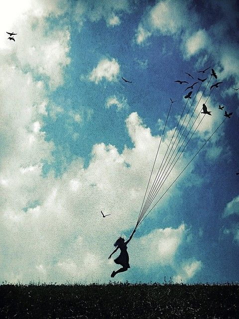 voar com pássaros