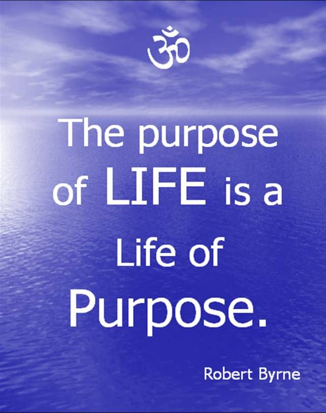 The purpose of life is a life of purpose - Robert Byrne
