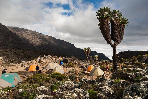 Barranco Camp, Kilimandjaro