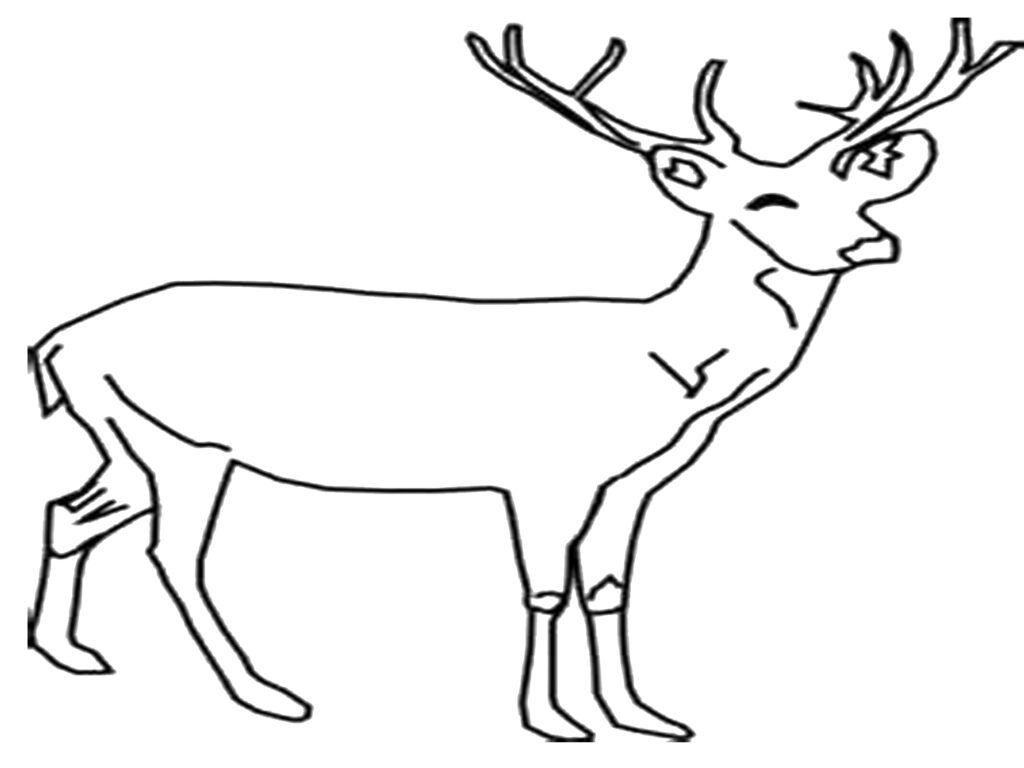 Coloring Pages Of Deer Antlers In 2020 Coloring Pages Quilting Studio Deer Antlers